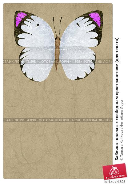 Бабочка - коллаж с свободным пространством (для текста), иллюстрация № 4898 (c) Tamara Kulikova / Фотобанк Лори