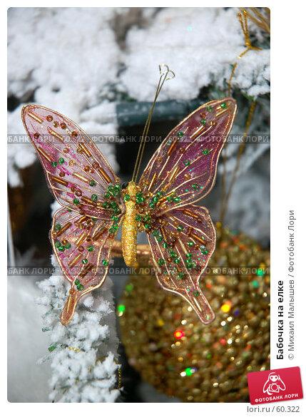 Бабочка на елке, фото № 60322, снято 20 октября 2006 г. (c) Михаил Малышев / Фотобанк Лори