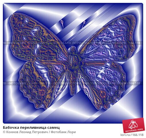Купить «Бабочка переливница самец», иллюстрация № 166118 (c) Коннов Леонид Петрович / Фотобанк Лори