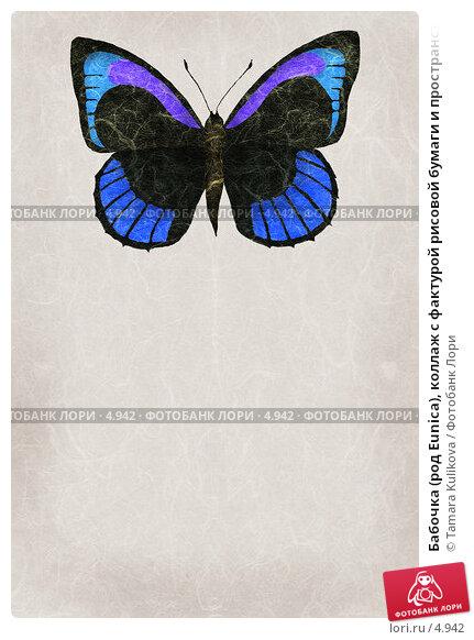 Бабочка (род Eunica), коллаж с фактурой рисовой бумаги и пространством для текста   , иллюстрация № 4942 (c) Tamara Kulikova / Фотобанк Лори