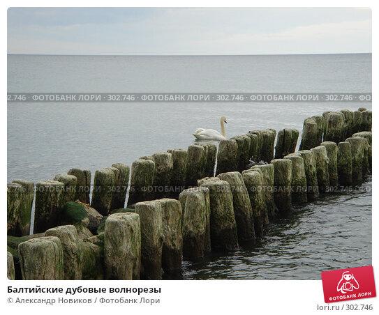 Балтийские дубовые волнорезы, фото № 302746, снято 29 апреля 2008 г. (c) Александр Новиков / Фотобанк Лори