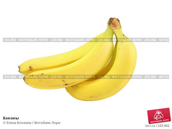 Бананы, фото № 233902, снято 1 декабря 2007 г. (c) Елена Блохина / Фотобанк Лори