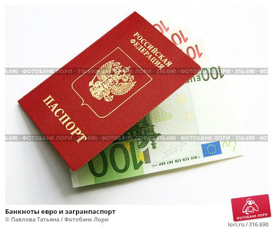 Банкноты евро и загранпаспорт, фото № 316690, снято 3 июня 2008 г. (c) Павлова Татьяна / Фотобанк Лори