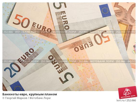 Купить «Банкноты евро, крупным планом», фото № 252066, снято 14 апреля 2008 г. (c) Георгий Марков / Фотобанк Лори