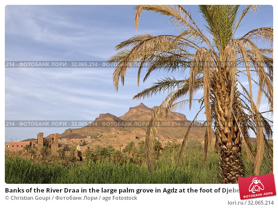 Banks of the River Draa in the large palm grove in Agdz at the foot of Djebel Kissane, Mount Kissane (Jbel Kissane), Draa-Tafilet region, Morocco, North West Africa. Стоковое фото, фотограф Christian Goupi / age Fotostock / Фотобанк Лори