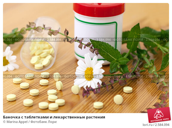 Купить «Баночка с таблетками и лекарственные растения», фото № 2584094, снято 27 мая 2019 г. (c) Marina Appel / Фотобанк Лори