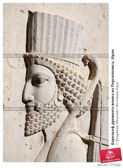 Барельеф древнего воина из Персеполиса, Иран, фото № 177622, снято 27 ноября 2007 г. (c) Владимир Мельник / Фотобанк Лори