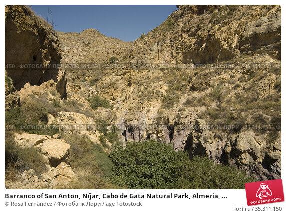 Barranco of San Anton, Níjar, Cabo de Gata Natural Park, Almeria, ... Стоковое фото, фотограф Rosa Fernández / age Fotostock / Фотобанк Лори