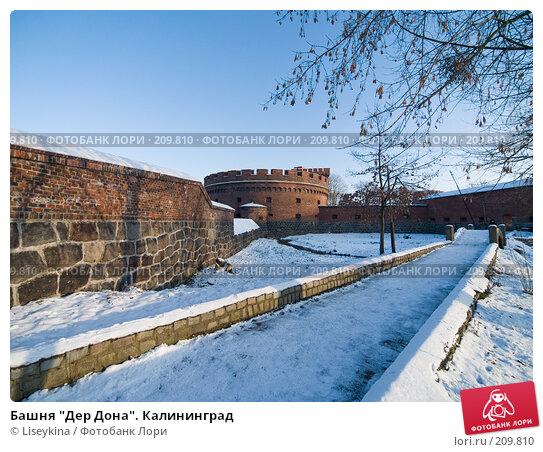 """Башня """"Дер Дона"""". Калининград, фото № 209810, снято 2 января 2008 г. (c) Liseykina / Фотобанк Лори"""