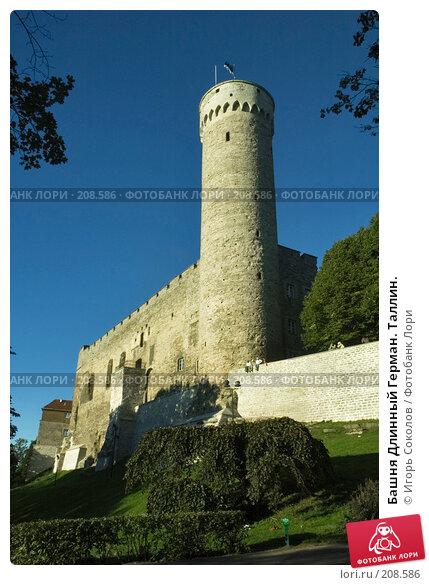 Купить «Башня Длинный Герман. Таллин.», фото № 208586, снято 9 сентября 2007 г. (c) Игорь Соколов / Фотобанк Лори