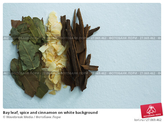 Купить «Bay leaf, spice and cinnamon on white background», фото № 27069462, снято 5 июня 2017 г. (c) Wavebreak Media / Фотобанк Лори