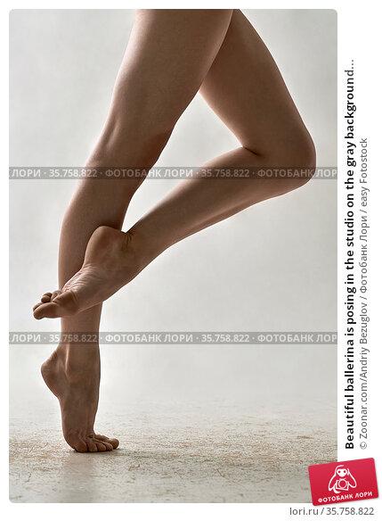 Beautiful ballerina is posing in the studio on the gray background... Стоковое фото, фотограф Zoonar.com/Andriy Bezuglov / easy Fotostock / Фотобанк Лори
