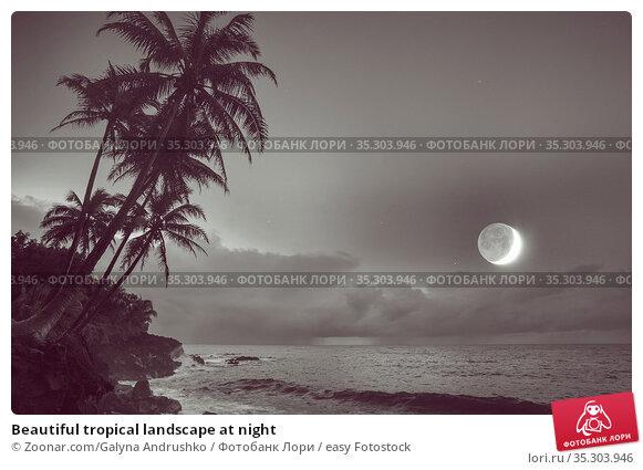 Beautiful tropical landscape at night. Стоковое фото, фотограф Zoonar.com/Galyna Andrushko / easy Fotostock / Фотобанк Лори