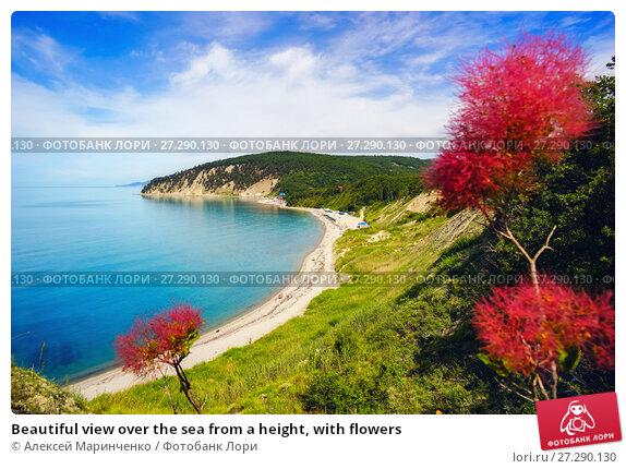 Купить «Beautiful view over the sea from a height, with flowers», фото № 27290130, снято 18 июня 2017 г. (c) Алексей Маринченко / Фотобанк Лори