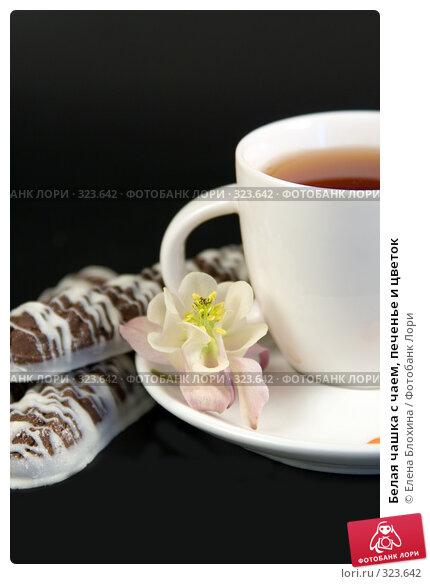 Белая чашка с чаем, печенье и цветок, фото № 323642, снято 7 июня 2008 г. (c) Елена Блохина / Фотобанк Лори