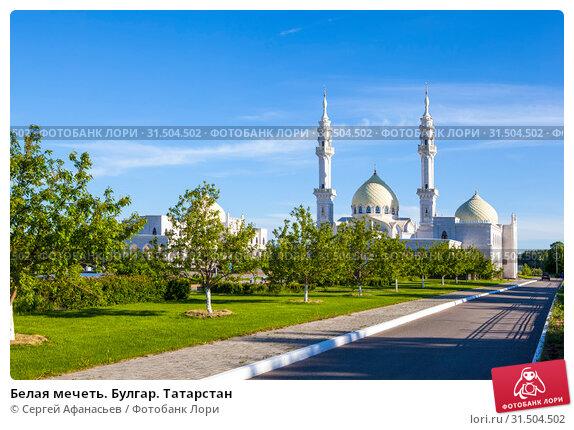 Купить «Белая мечеть. Булгар. Татарстан», фото № 31504502, снято 25 мая 2019 г. (c) Сергей Афанасьев / Фотобанк Лори