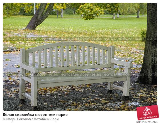 Белая скамейка в осеннем парке, фото № 95266, снято 17 января 2017 г. (c) Игорь Соколов / Фотобанк Лори