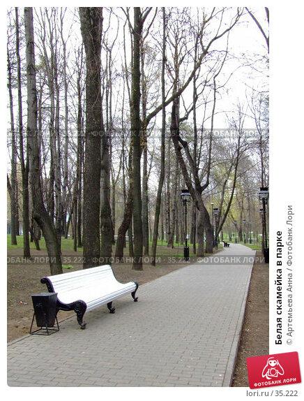 Купить «Белая скамейка в парке», фото № 35222, снято 11 января 2006 г. (c) Артемьева Анна / Фотобанк Лори