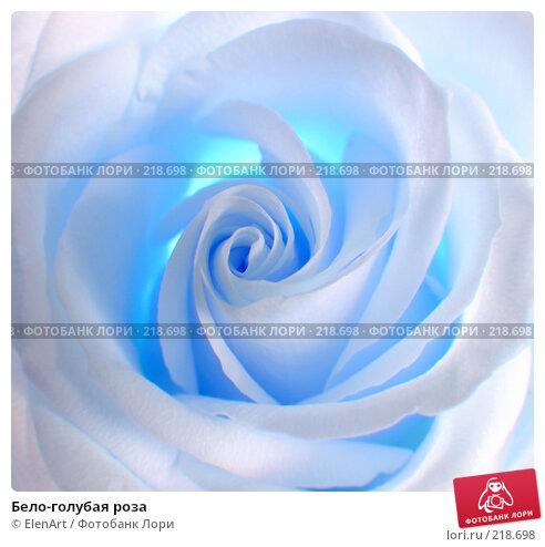 Купить «Бело-голубая роза», фото № 218698, снято 22 апреля 2018 г. (c) ElenArt / Фотобанк Лори