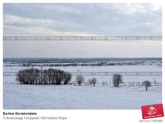 Белое безмолвие, фото № 118566, снято 25 марта 2006 г. (c) Александр Галуцкий / Фотобанк Лори