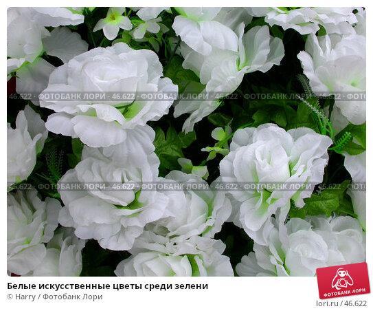 Белые искусственные цветы среди зелени, фото № 46622, снято 12 мая 2007 г. (c) Harry / Фотобанк Лори