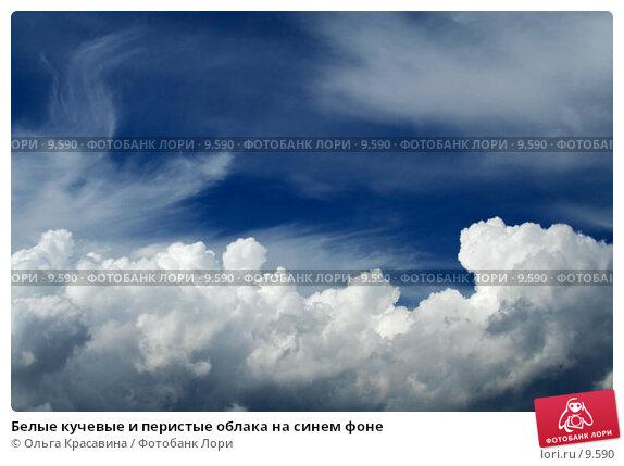 Белые кучевые и перистые облака на синем фоне , фото № 9590, снято 26 июня 2006 г. (c) Ольга Красавина / Фотобанк Лори