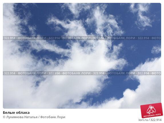 Белые облака, фото № 322914, снято 10 июня 2008 г. (c) Лукиянова Наталья / Фотобанк Лори