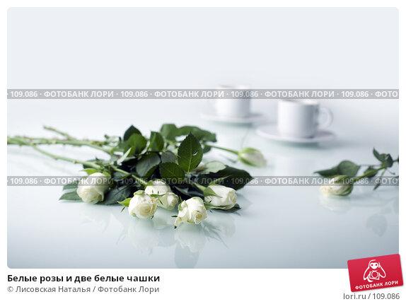 Белые розы и две белые чашки, фото № 109086, снято 1 ноября 2007 г. (c) Лисовская Наталья / Фотобанк Лори