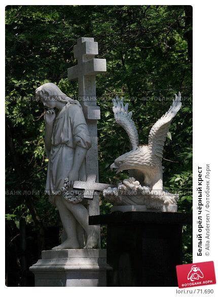 Белый орёл чёрный крест, фото № 71690, снято 31 мая 2007 г. (c) Alla Andersen / Фотобанк Лори
