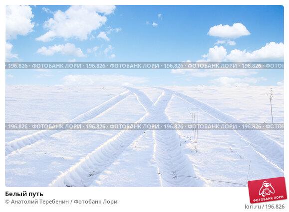 Белый путь, фото № 196826, снято 3 февраля 2008 г. (c) Анатолий Теребенин / Фотобанк Лори