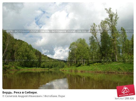 Бердь. Река в Сибири., фото № 288926, снято 11 июня 2007 г. (c) Селигеев Андрей Иванович / Фотобанк Лори