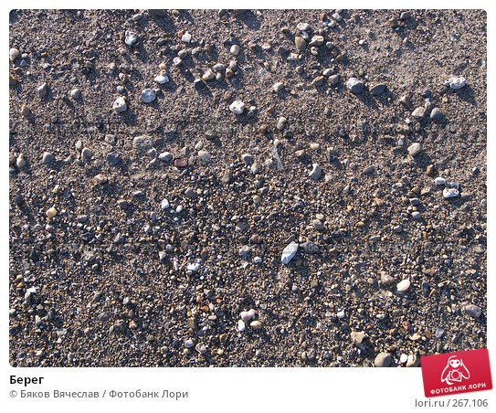 Берег, фото № 267106, снято 23 марта 2008 г. (c) Бяков Вячеслав / Фотобанк Лори