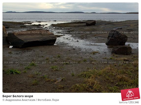 Берег Белого моря, фото № 253346, снято 24 сентября 2007 г. (c) Андрюхина Анастасия / Фотобанк Лори