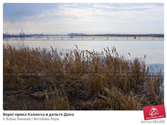 Купить «Берег ерика Каланча в дельте Дона», фото № 253270, снято 11 апреля 2008 г. (c) Борис Панасюк / Фотобанк Лори
