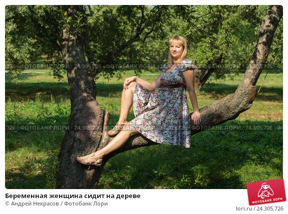 Купить «Беременная женщина сидит на дереве», фото № 24305726, снято 10 августа 2014 г. (c) Андрей Некрасов / Фотобанк Лори