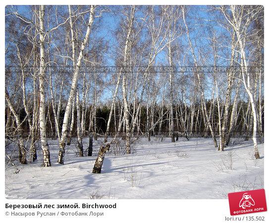 Купить «Березовый лес зимой. Birchwood», фото № 135502, снято 4 февраля 2007 г. (c) Насыров Руслан / Фотобанк Лори