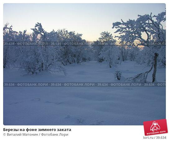 Березы на фоне зимнего заката, фото № 39634, снято 2 ноября 2006 г. (c) Виталий Матонин / Фотобанк Лори