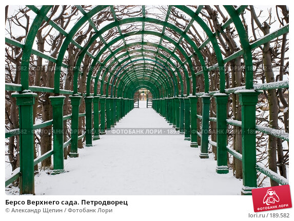 Берсо Верхнего сада. Петродворец, эксклюзивное фото № 189582, снято 27 января 2008 г. (c) Александр Щепин / Фотобанк Лори