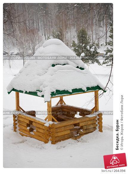 Беседка. Буран, фото № 264094, снято 18 февраля 2008 г. (c) Игорь Жоров / Фотобанк Лори