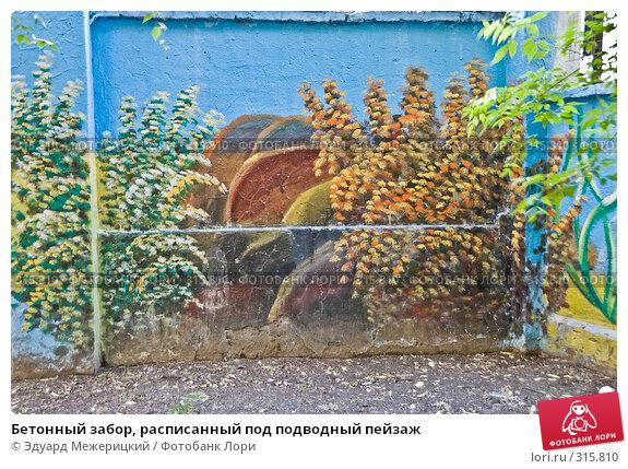 Бетонный забор, расписанный под подводный пейзаж, фото № 315810, снято 7 июня 2008 г. (c) Эдуард Межерицкий / Фотобанк Лори
