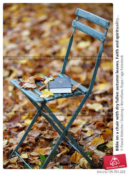Bible on a chair with dry fallen autumn leaves. Faith and spirituality... Стоковое фото, фотограф Pascal Deloche / Godong / age Fotostock / Фотобанк Лори