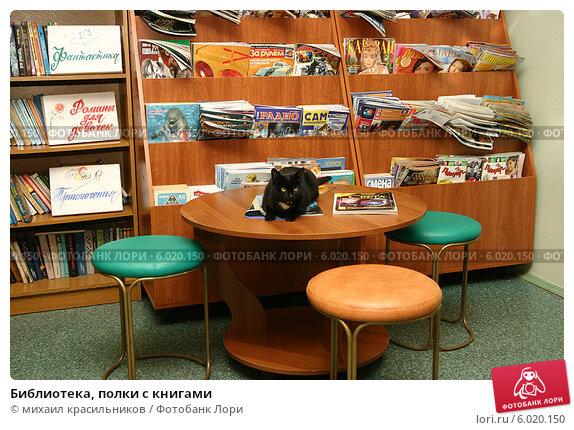 Библиотека, полки с книгами. купить фото 6020150. фотограф м.
