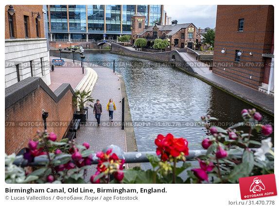 Купить «Birmingham Canal, Old Line, Birmingham, England.», фото № 31470778, снято 23 января 2020 г. (c) age Fotostock / Фотобанк Лори