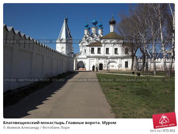 Ворота муром купить металлический забор в москве