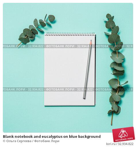 Купить «Blank notebook and eucalyptus on blue background», фото № 32934822, снято 1 июля 2019 г. (c) Ольга Сергеева / Фотобанк Лори