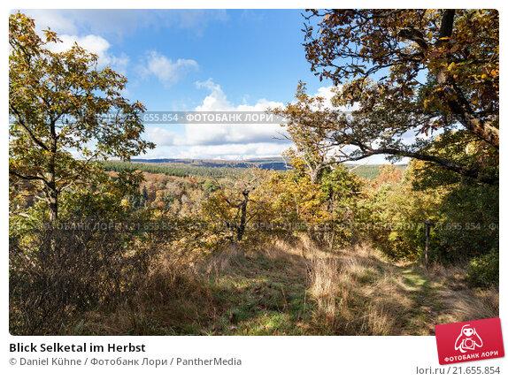 Купить «Blick Selketal im Herbst», фото № 21655854, снято 16 июня 2019 г. (c) PantherMedia / Фотобанк Лори