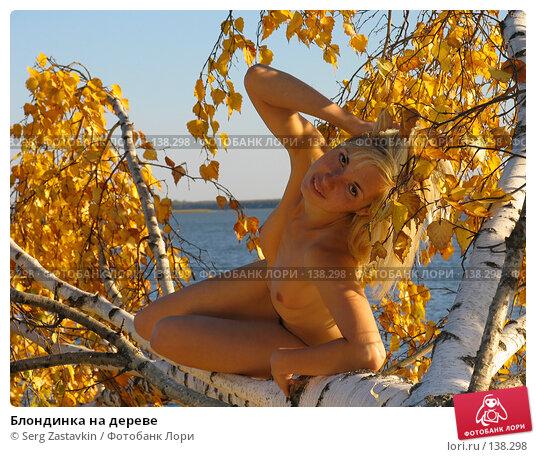 Блондинка на дереве, фото № 138298, снято 18 сентября 2005 г. (c) Serg Zastavkin / Фотобанк Лори