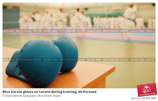 Купить «Blue karate gloves on tatami during training, de-focused», фото № 26691094, снято 7 июля 2020 г. (c) Константин Шишкин / Фотобанк Лори