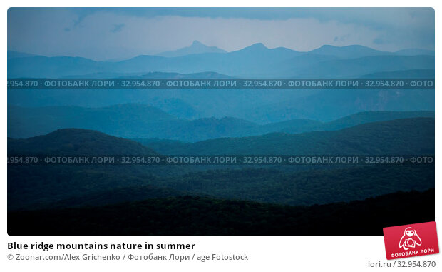 Blue ridge mountains nature in summer. Стоковое фото, фотограф Zoonar.com/Alex Grichenko / age Fotostock / Фотобанк Лори