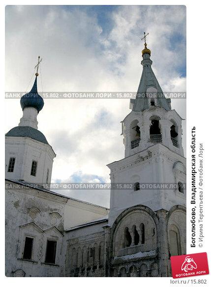 Боголюбово, Владимирская область, эксклюзивное фото № 15802, снято 5 ноября 2006 г. (c) Ирина Терентьева / Фотобанк Лори
